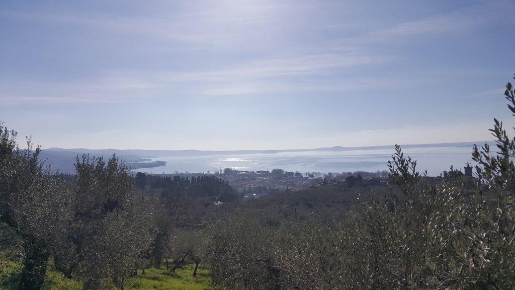 Aussicht auf den Bracciano See in Italien