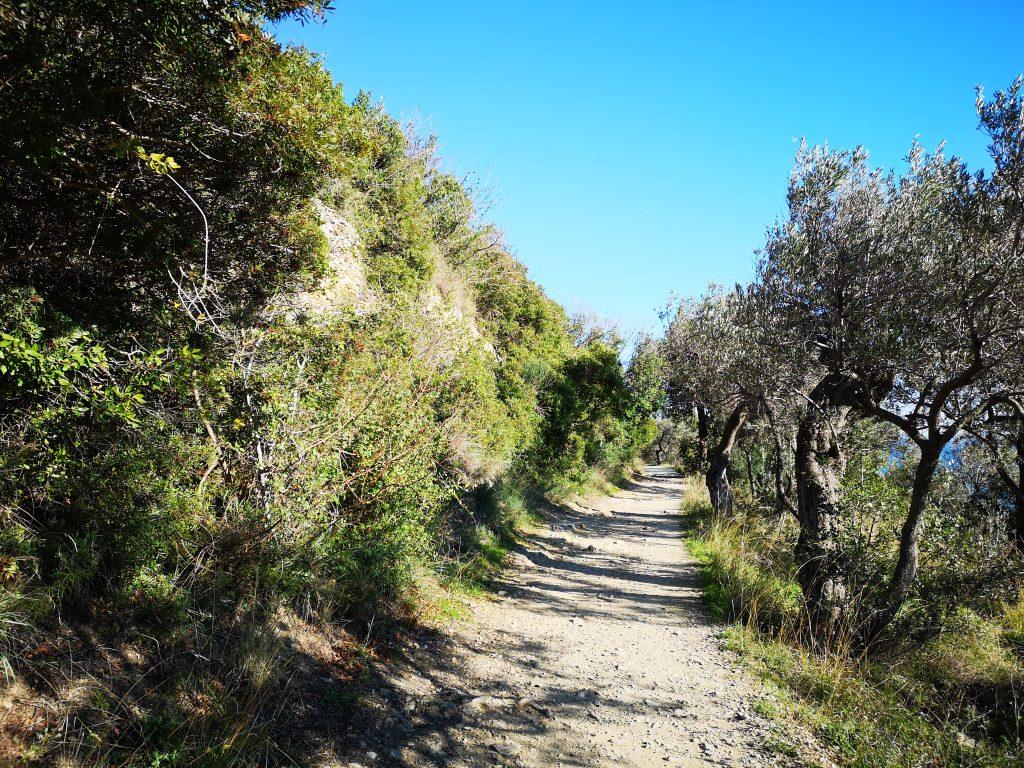 Via Julia - Römische Straße bei Albenga Italien