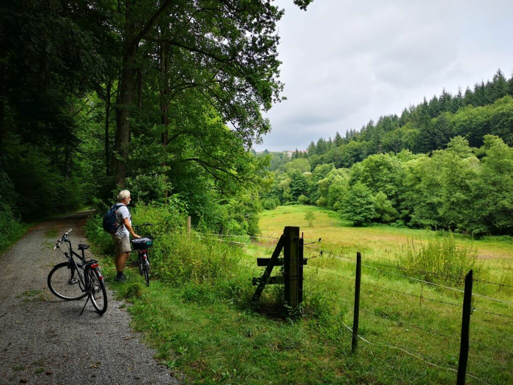 Fahrradtour Bad Herrenalb nach Ettlingen