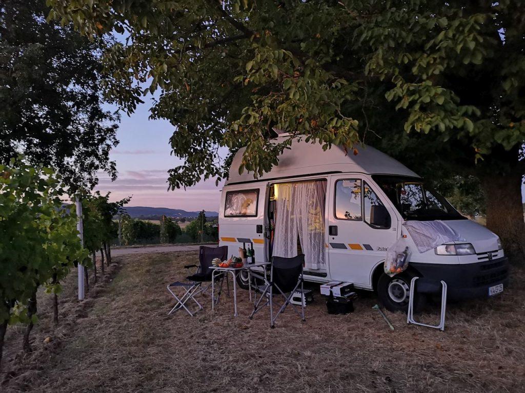 Freicampen in der Pfalz